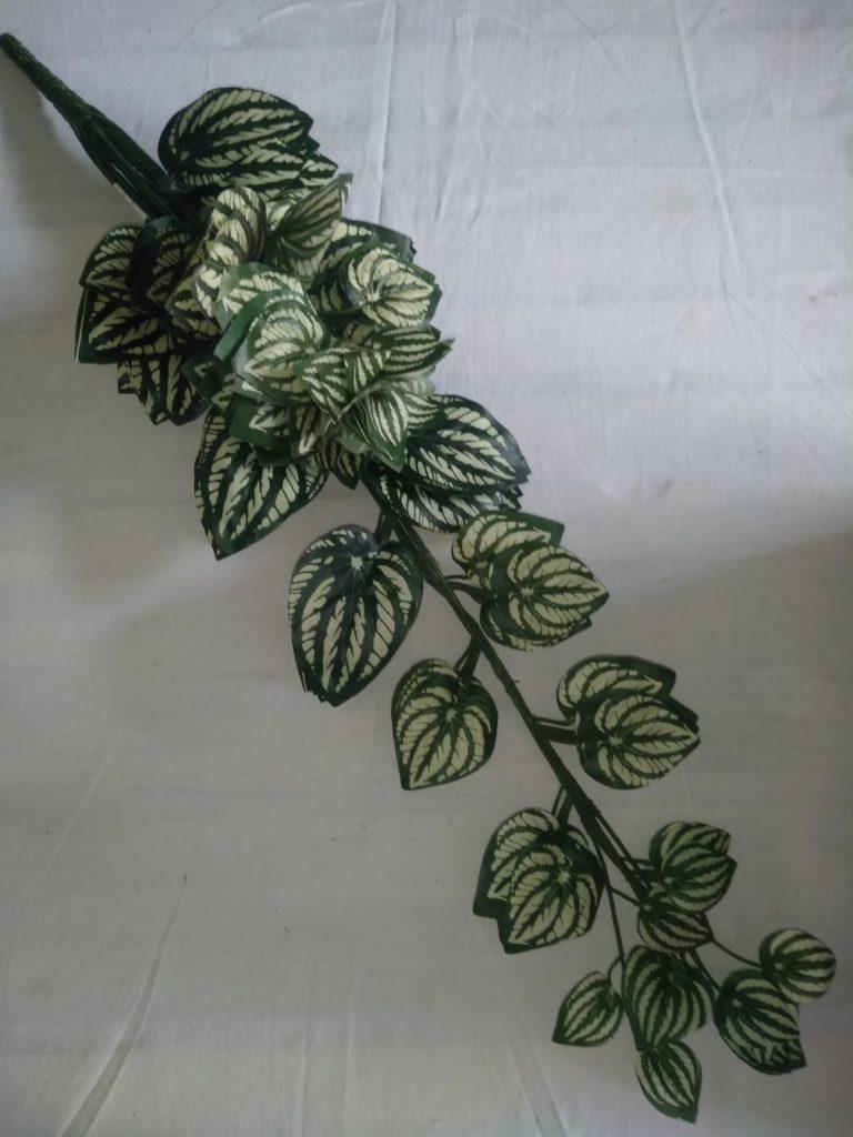 Frunze 70cm -