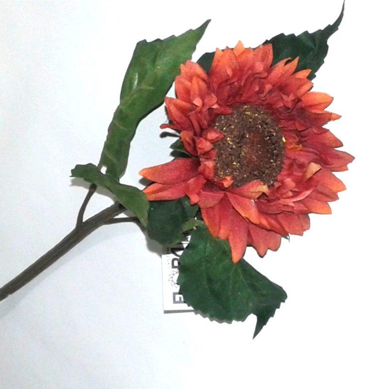 Floarea soarelui -