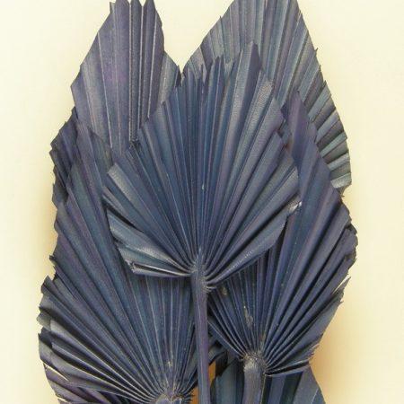 Frunze de palmier