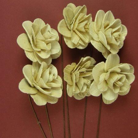 Flori 6cm