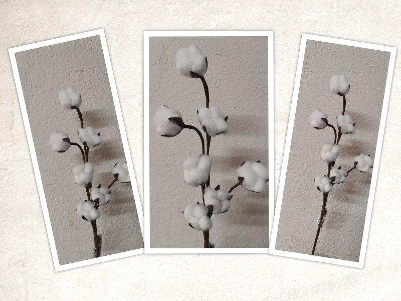 Flori bumbac cu tija 46cm