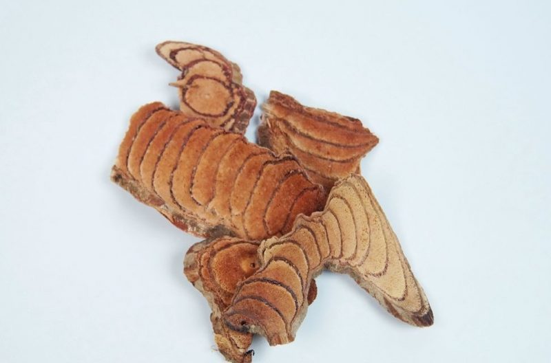 Felii lemn tigru -