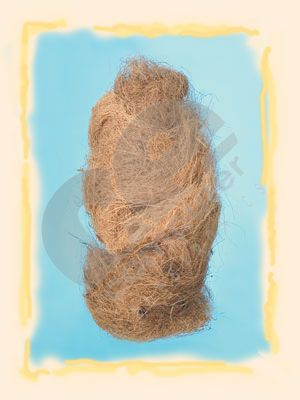 Fibra de cocos -