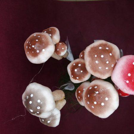 Ciuperci decorative