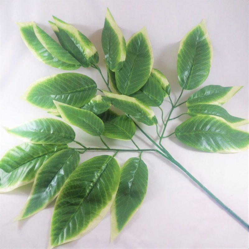 Creanga cu frunze