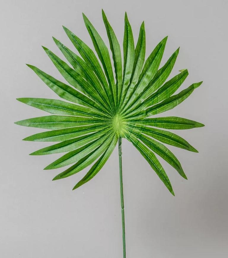 Frunza de palmier 45cm