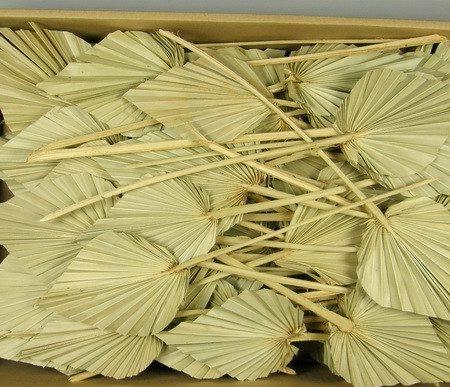 Frunze de palmier mini 100buc