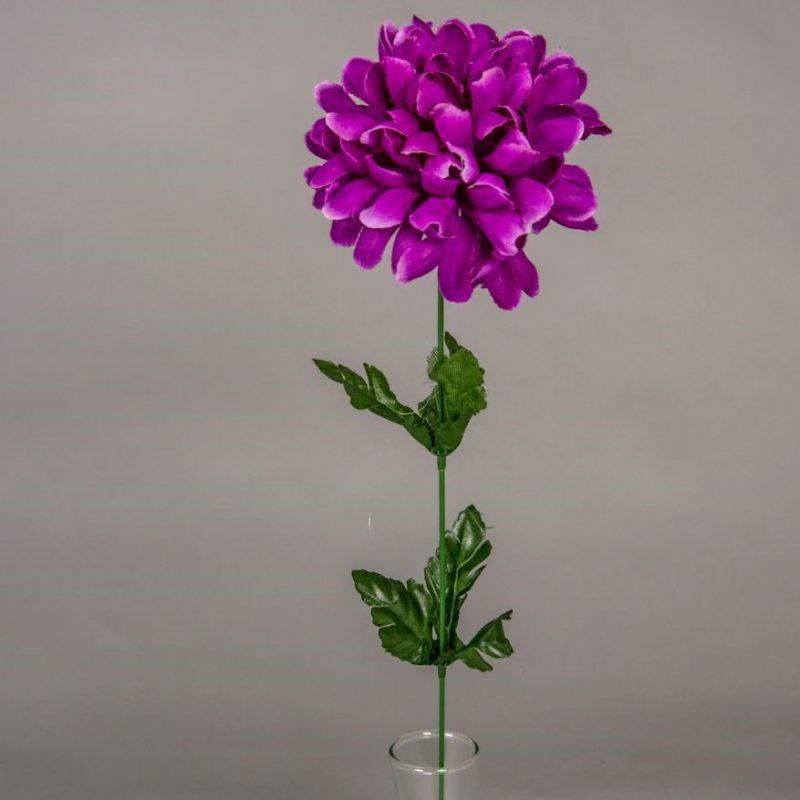 Crizantema - mov