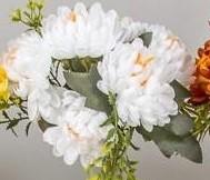 Buchet crizanteme mini 10 flori
