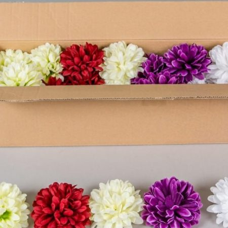 Crizanteme 10 cm