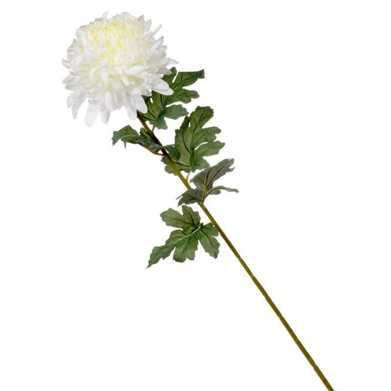 Crizantema alb