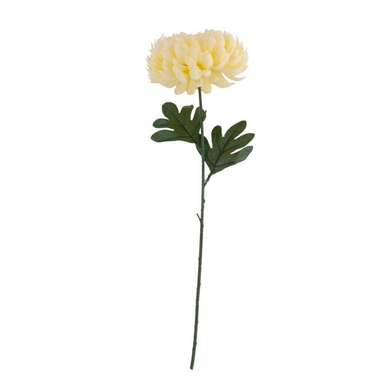 Crizantema 50 cm -