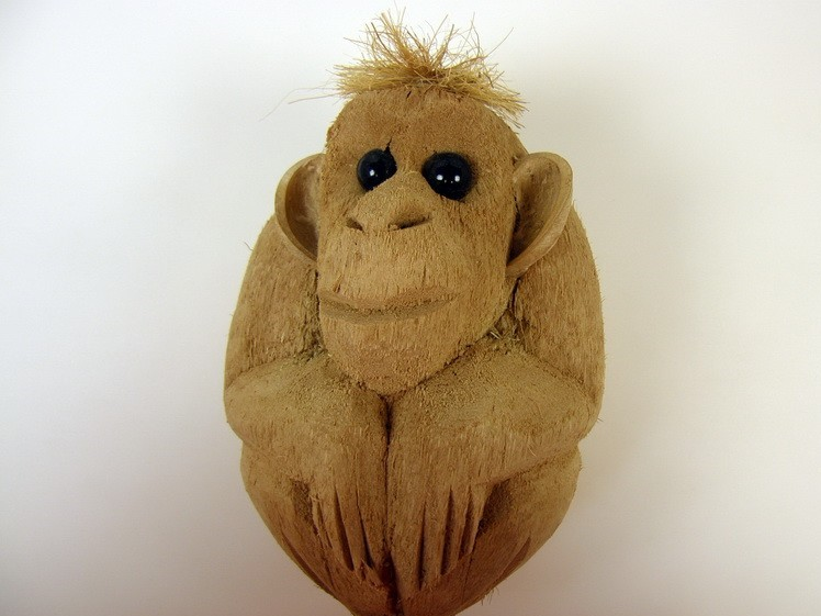 Maimuta cocos 50 ron/buc