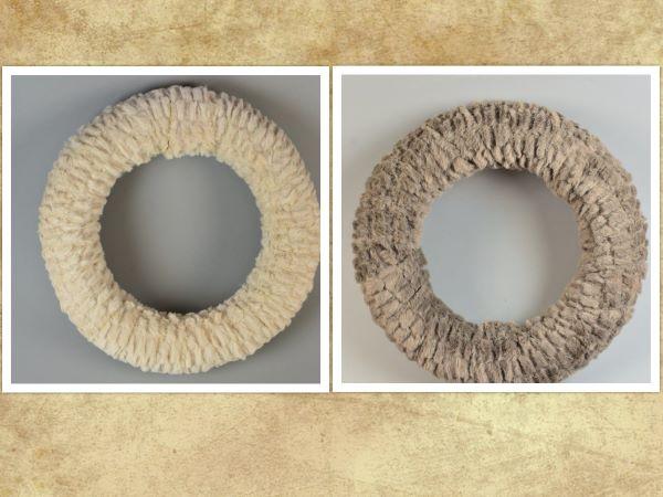 Coronita imblanita 25 cm