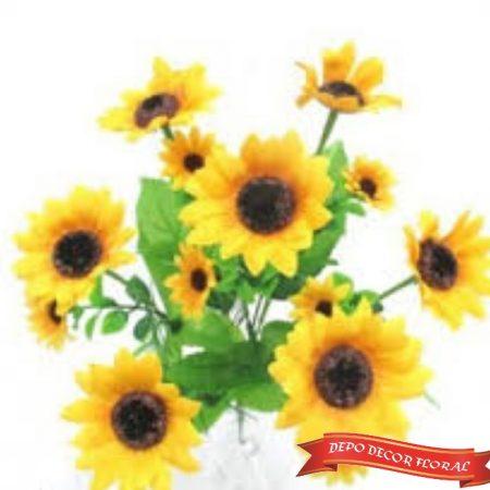 Floarea soarelui 7 crengute