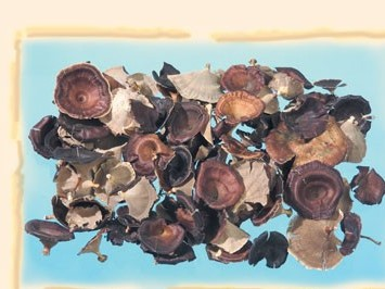 Ciuperci natur 0,12 kg