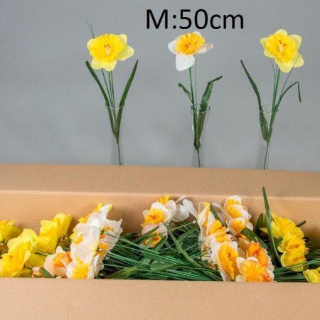 Narcisa la fir 50 cm