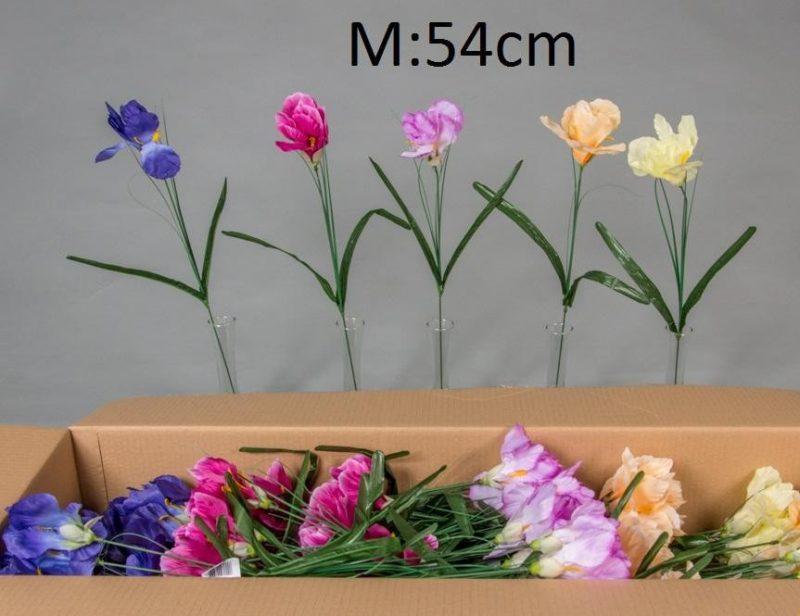 Iris 54 cm