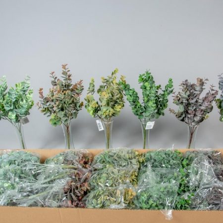 Tufis de eucalipt cu 5 crengute