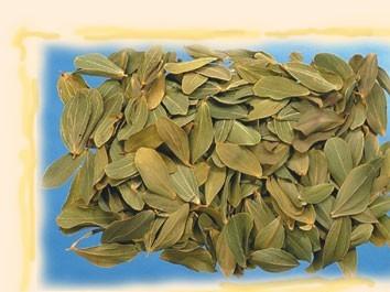 Frunze cabo natur 60 g
