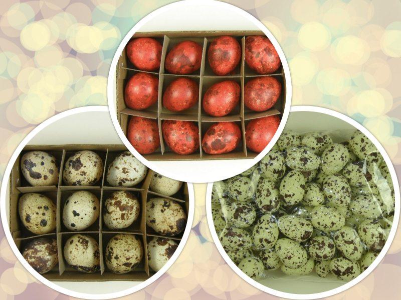 Set oua de prepelita 1