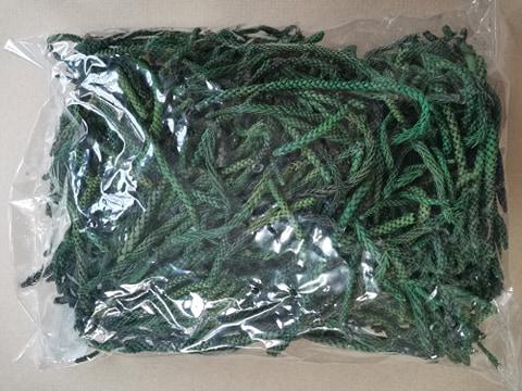 Araukaria verde 500 g