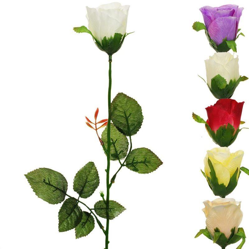 Trandafir 50 cm
