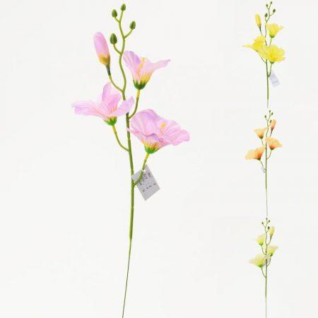 Gladiola 44 cm