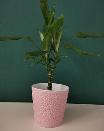 Vase ceramica 15 cm