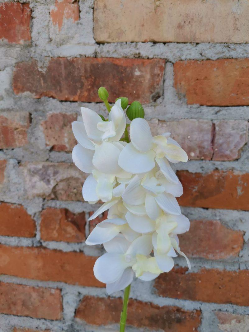 Orhidee 53 cm