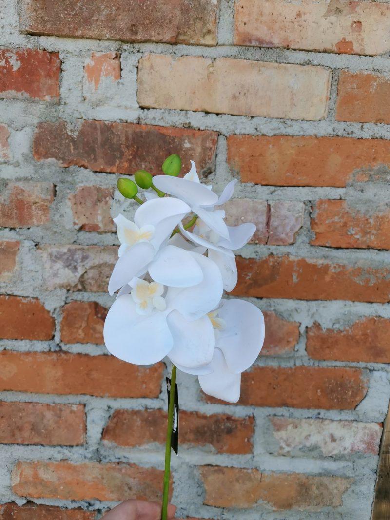 Orhidee 38 cm