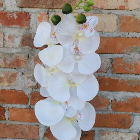 Orhidee 78 cm