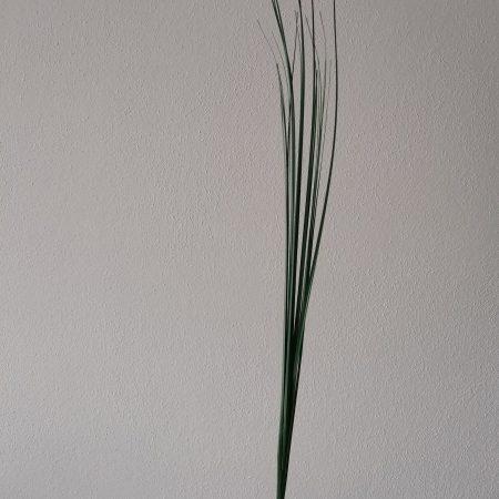 Iarba verde 51 cm