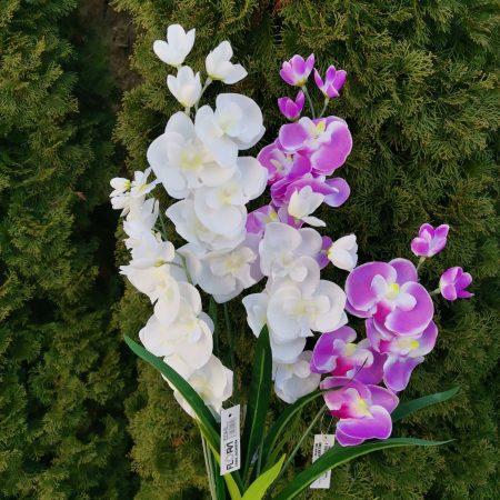 Orhidee 61 cm