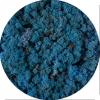 Licheni norvegieni albastru lavanda 85