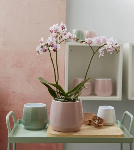 Vase ceramica 13 cm