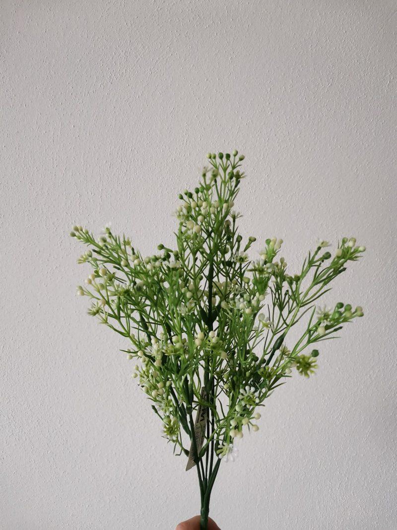 Verdeata cu floricele 35 cm
