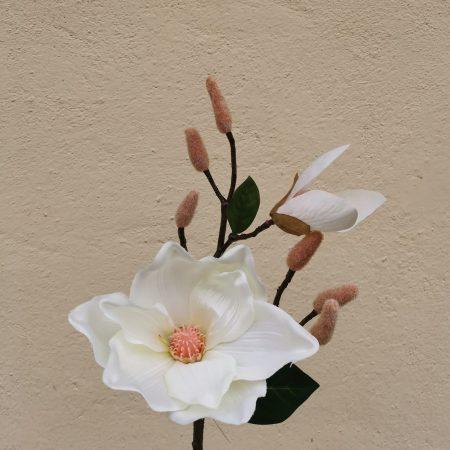 Magnolie 44 cm