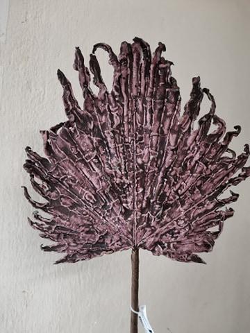 Frunza de palmier 70 cm