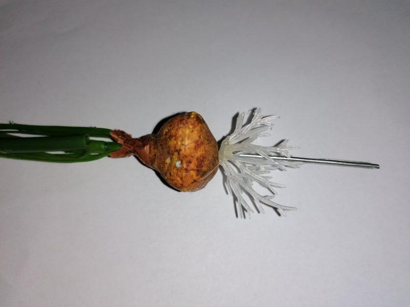 Narcise artificiale cu radacina descoperita 23x17cm -
