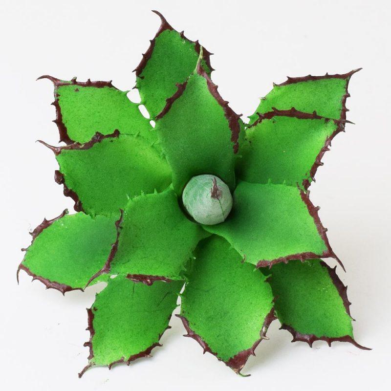 Cactus 10 cm