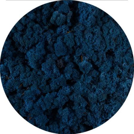 Licheni norvegieni albastru azur 86
