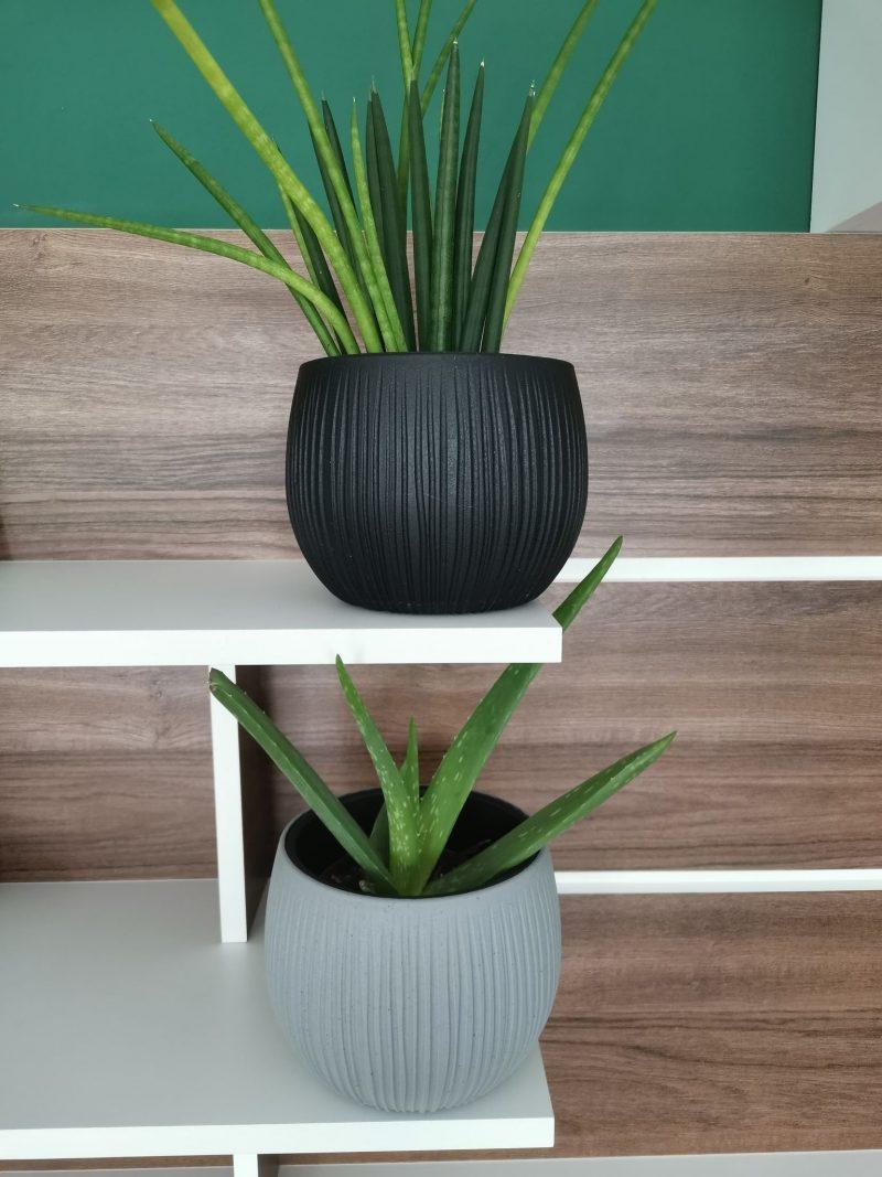 Ghiveci beton bowl 14 cm