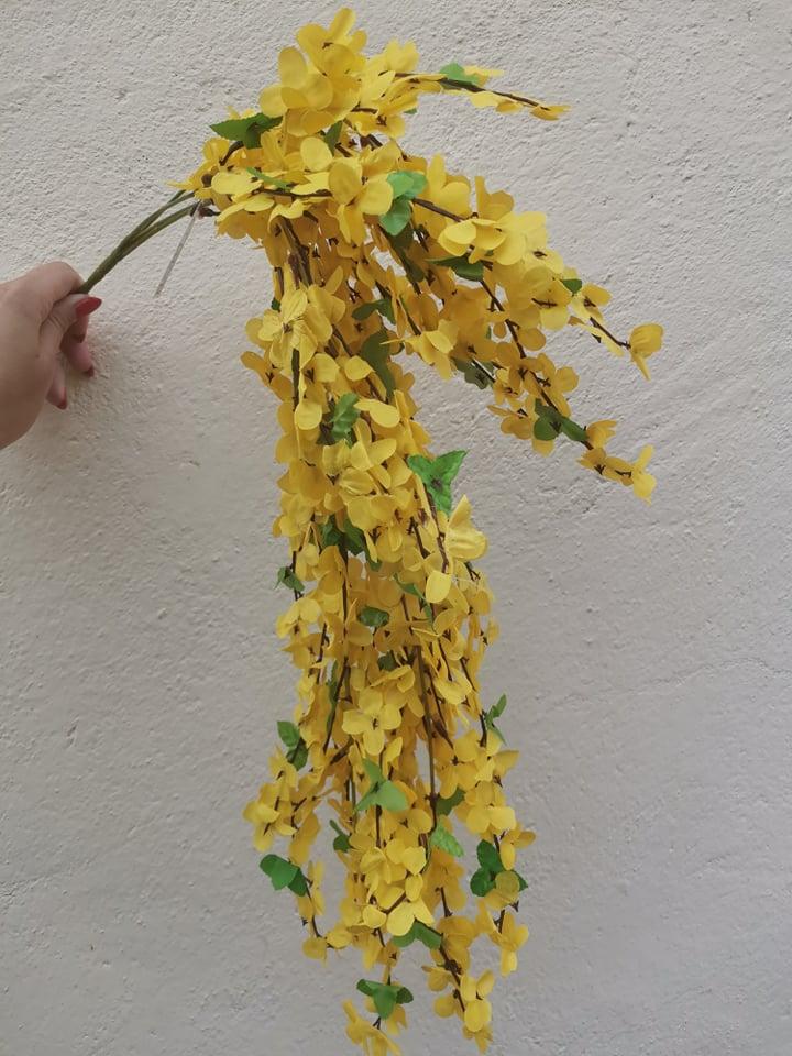 Salcam curgator galben 65 cm