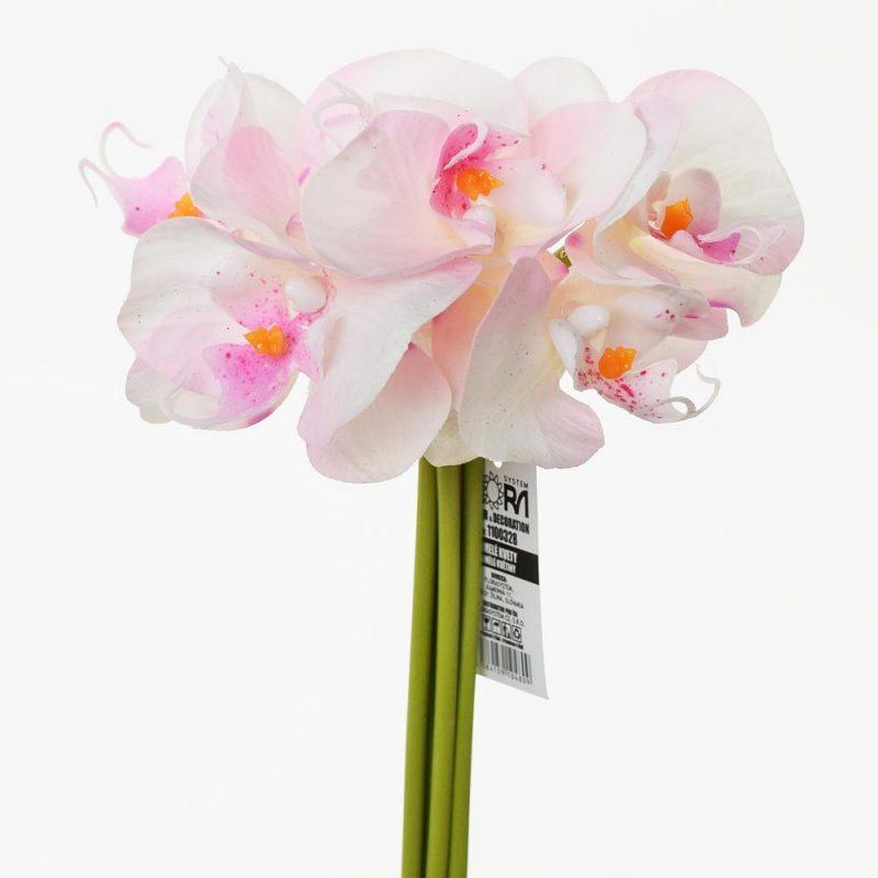 Orhidee 23 cm