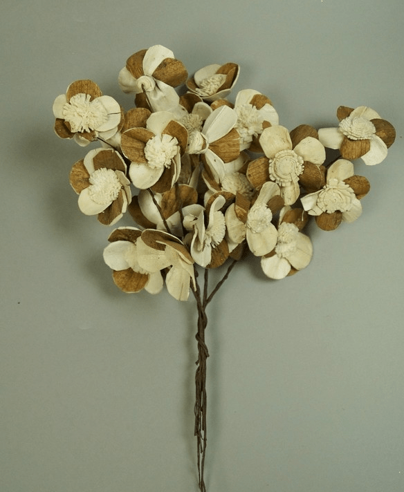 Buchet margarete ming 4 cm