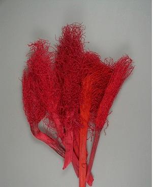 Sorg rosu 12 buc