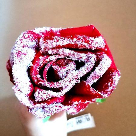 Trandafir cu aspect inzapezit 1 buc