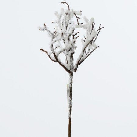 Crenguta brumata 28 cm